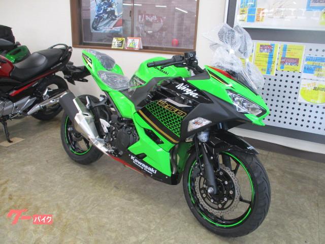 カワサキ Ninja 250 KRT 2020年カラーの画像(鹿児島県