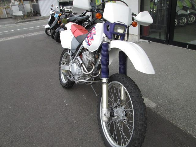 ホンダ XR250の画像(鹿児島県