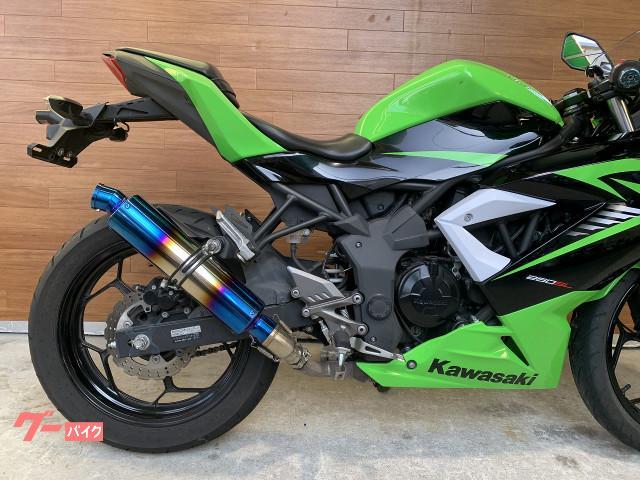 カワサキ Ninja 250SL グーバイク鑑定車の画像(熊本県