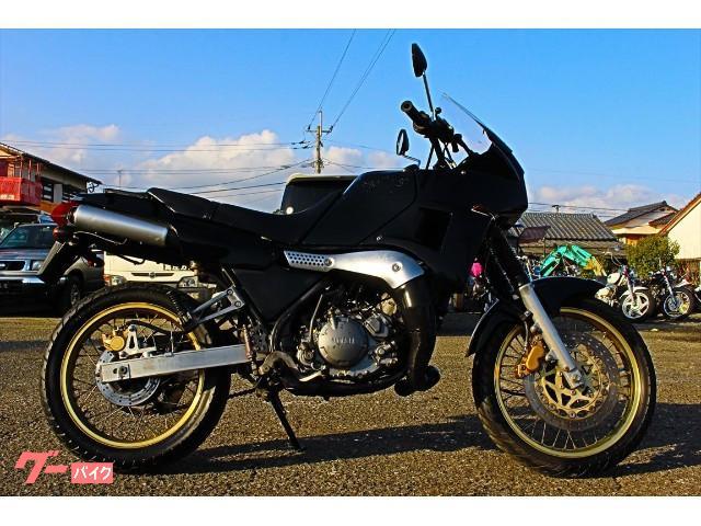 ヤマハ TDR250の画像(佐賀県