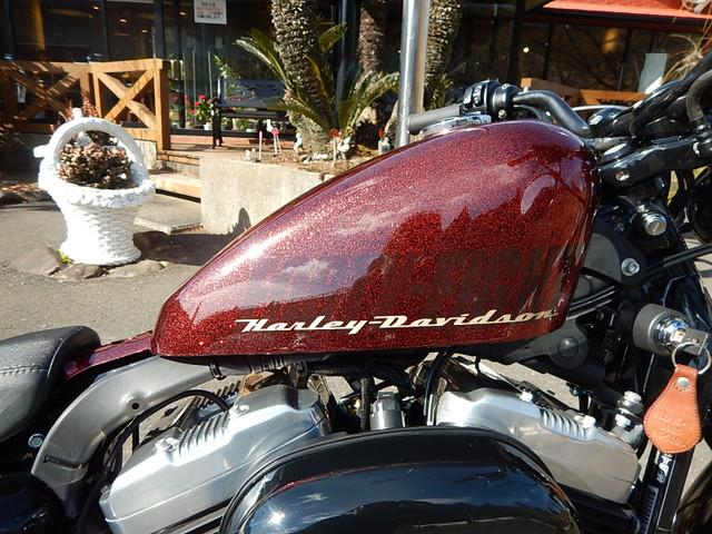 HARLEY-DAVIDSON XL1200X フォーティエイトの画像(宮崎県