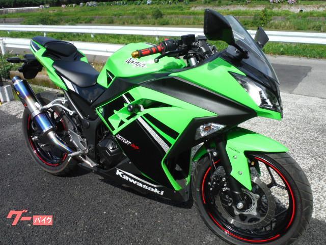 カワサキ Ninja 250 ABSスペシャルエディションの画像(佐賀県