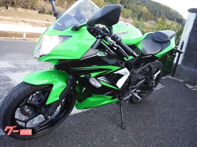 カワサキ Ninja 250SLの画像(佐賀県