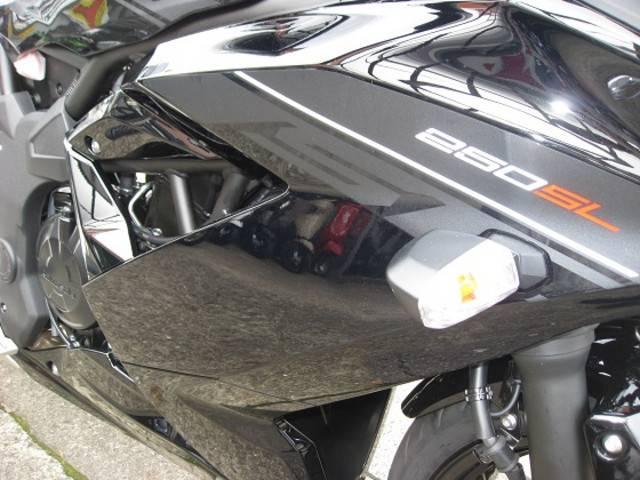 カワサキ Ninja 250SLの画像(大分県