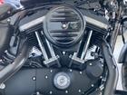 HARLEY-DAVIDSON XL883N アイアン 2018年モデル 純正オプションシート エンジンガード ブラックデニムの画像(福岡県