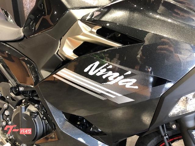 カワサキ Ninja 250 2021年モデルの画像(佐賀県