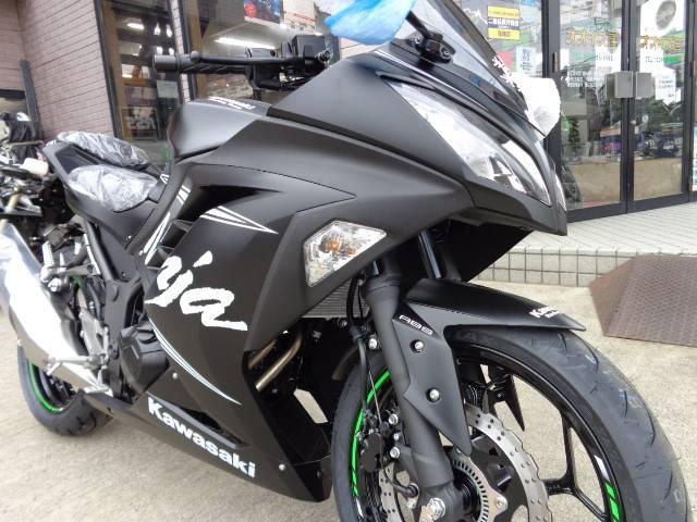 カワサキ Ninja 250 ABSKRTウィンターテストエデションの画像(宮城県