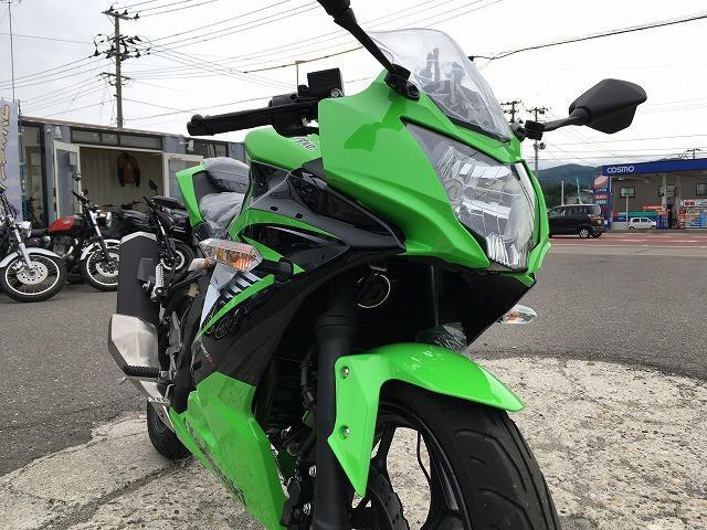 カワサキ Ninja 250SL 新車 No2337の画像(秋田県
