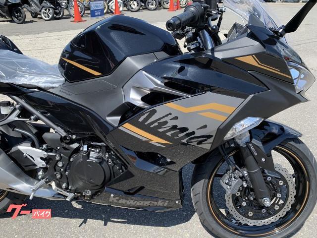 カワサキ Ninja 400 EX400G 2020モデル新車 No2890の画像(秋田県