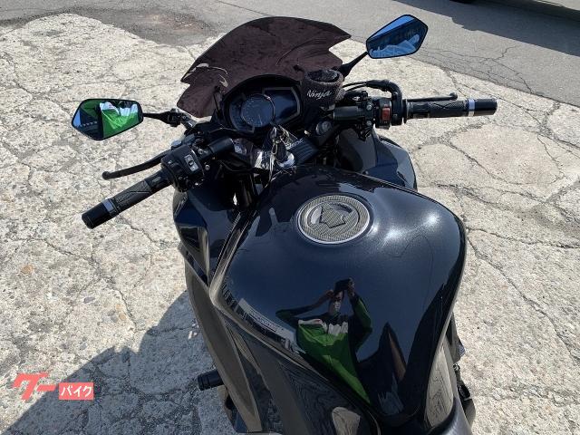カワサキ Ninja 1000 ZXT00W エンジンスライダー フェンダーレス装着 No2966の画像(秋田県