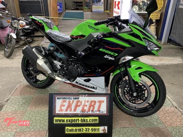 Ninja 250 KRT Edition 2021年モデル 新車 EX250P No2979