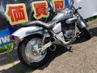 ホンダ V-TWIN MAGNAの画像(秋田県