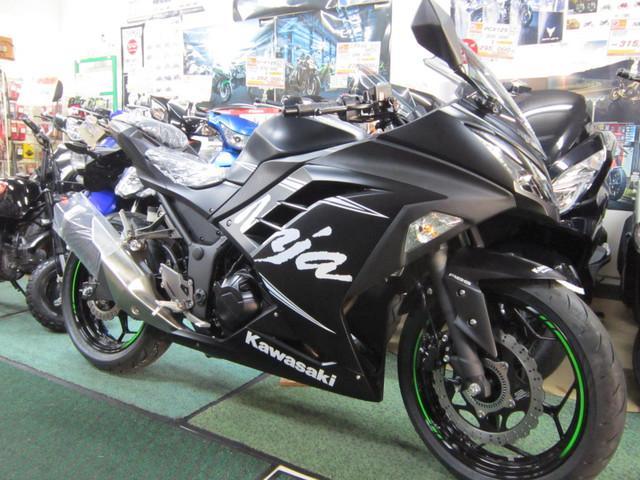 カワサキ Ninja 250の画像(岩手県