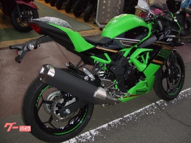 カワサキ Ninja 250SL 逆輸入フルパワー仕様の画像(宮城県