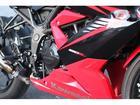 カワサキ Ninja 250SL  バックステップ装備の画像(宮城県