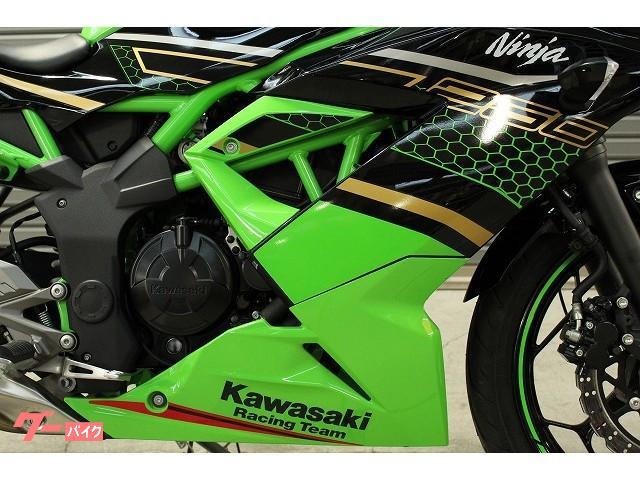 カワサキ Ninja 250SL KRTエディションの画像(愛媛県