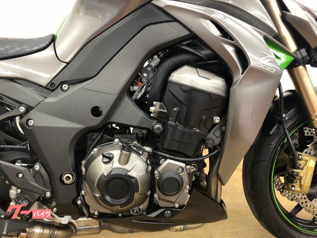 カワサキ Z1000 ABS 正規東南アジア仕様 フェンダーレスカスタムの画像(神奈川県
